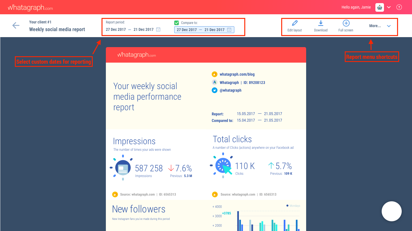Client reporting dashboard - report preview