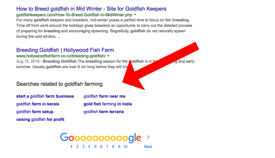 Use Google Search results for your keyword search